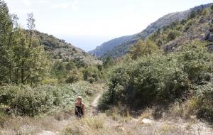 Hiking, wandelen, marcher…