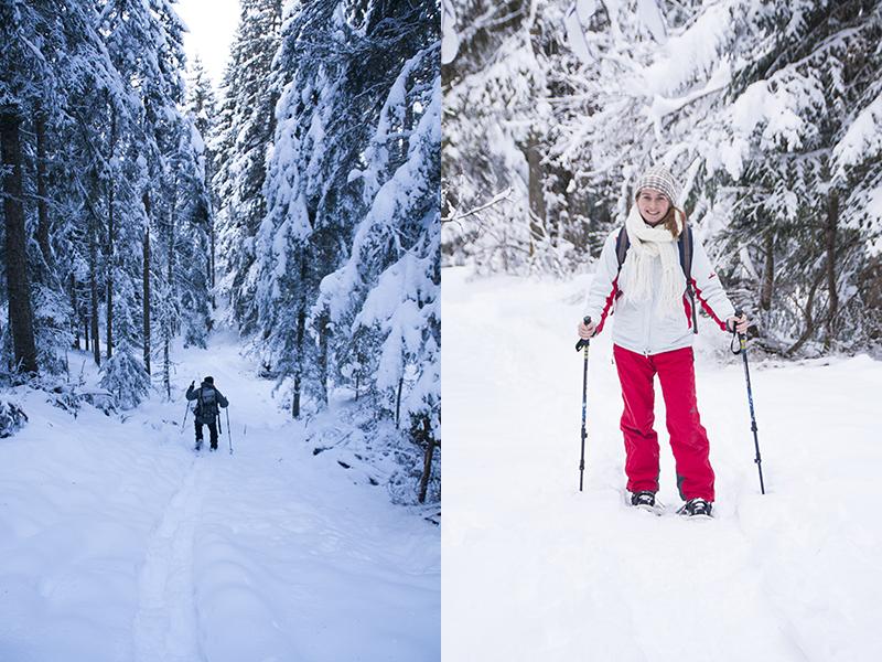 skien zonder ski