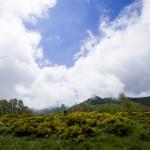 Koken met de natuur van de Auvergne