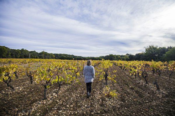 Een winterse roadtrip door de Provence in vier dagen