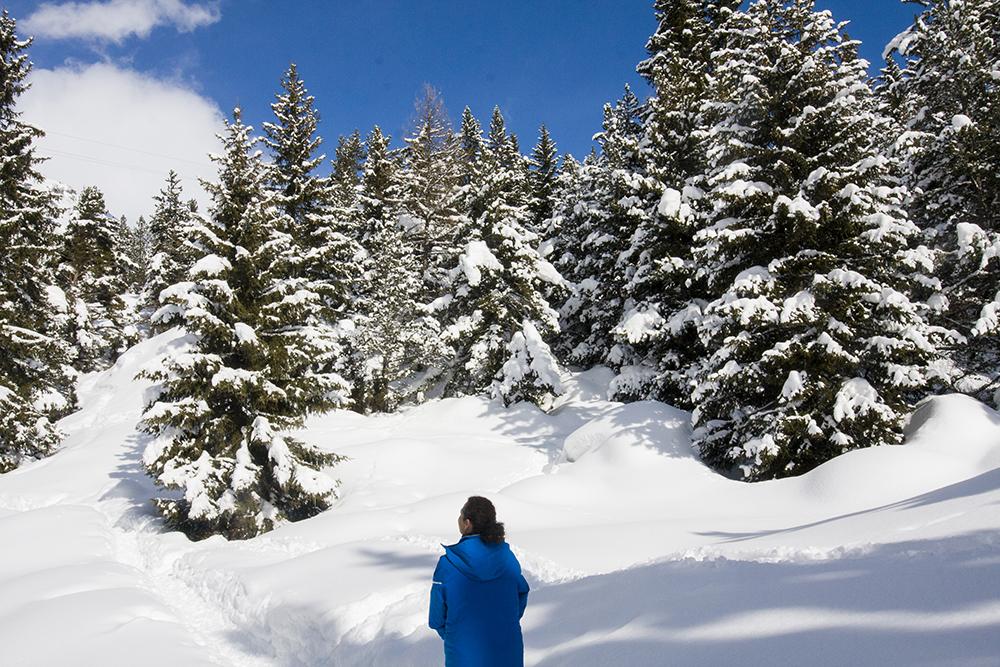wandelen-franse-alpen-winter-001