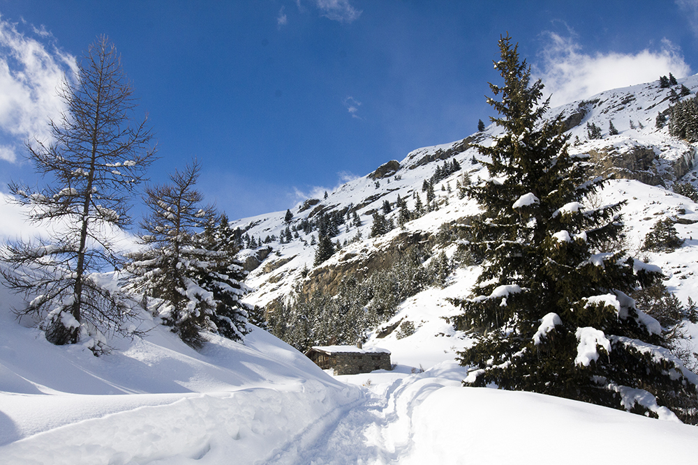 wandelen-franse-alpen-winter-004