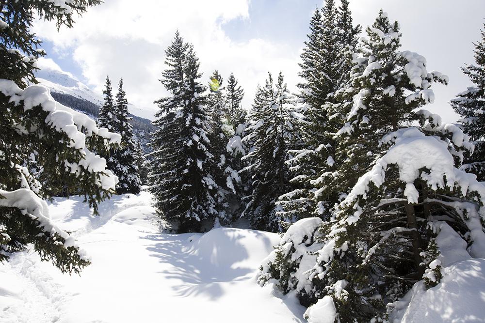 wandelen-franse-alpen-winter-008
