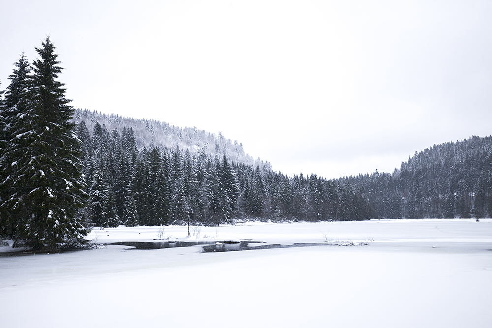 winterreis-vogezen-001