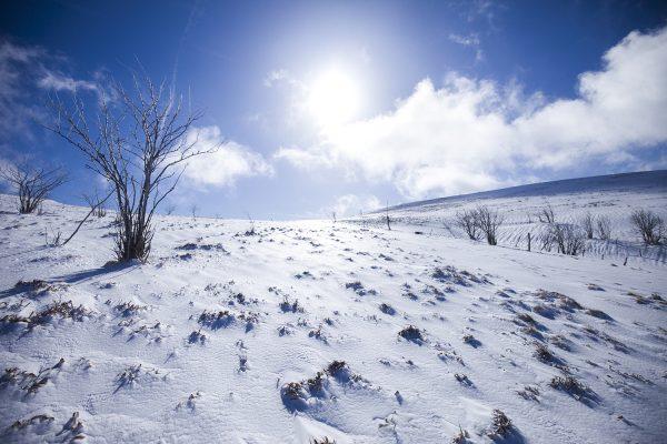 C'est magique: een winterreis door de Vogezen