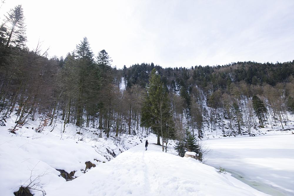 winterreis-vogezen-colmar-lac-corbeaux-001