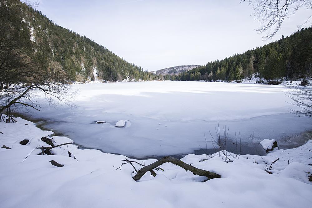 winterreis-vogezen-colmar-lac-corbeaux-002