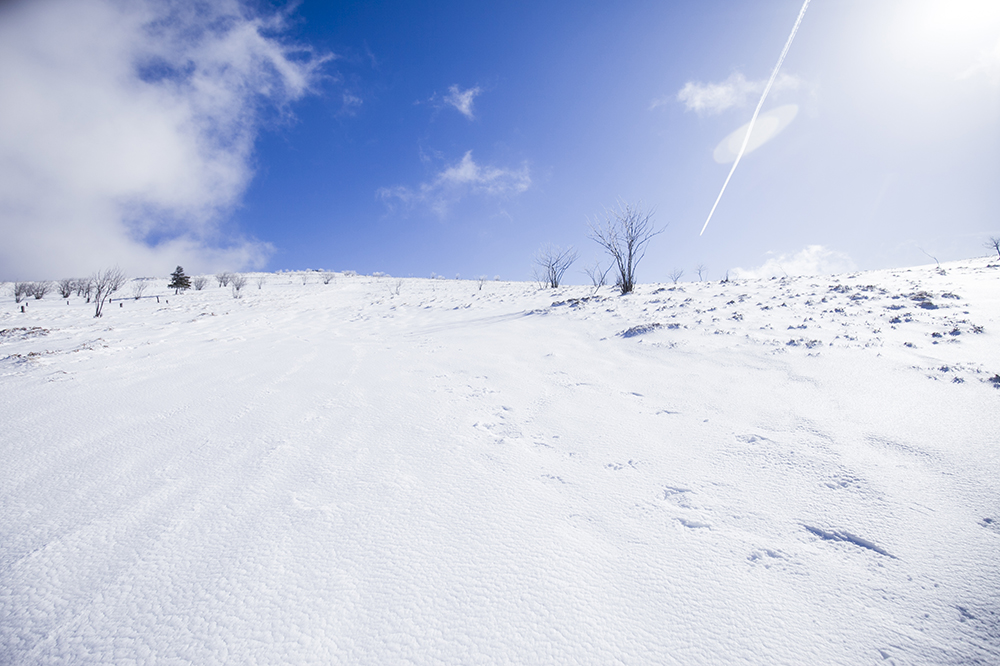 winterreis-vogezen-raquettes-005
